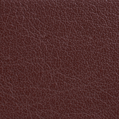 AsukaBook Photo Book Leather Color - Brown