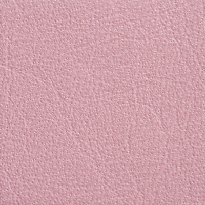 AsukaBook Photo Book Leather Color - Pink
