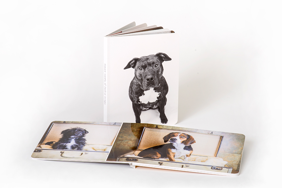 AsukaBook Curve Photo Book comes with layflat binding and thick board pages