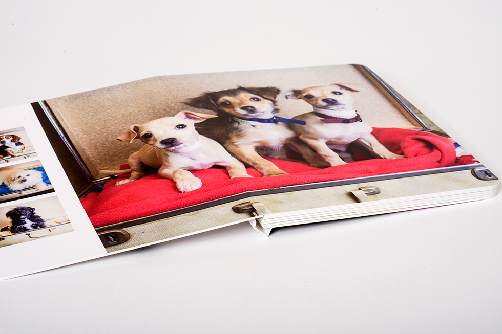 AsukaBook Curve Photo Book The layflat binding allows for beautiful panoramas